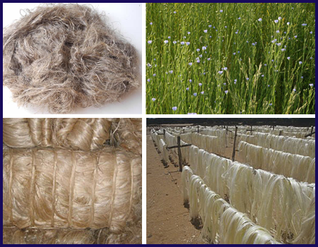 Flax, Abaca and Sisal Fiber